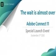 نسخه 11 Adobe Connect